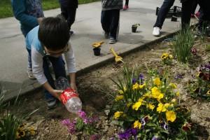 jedno dijete jedan cvijet5